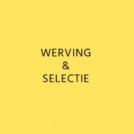 2) Diensten - Werving & Selectie